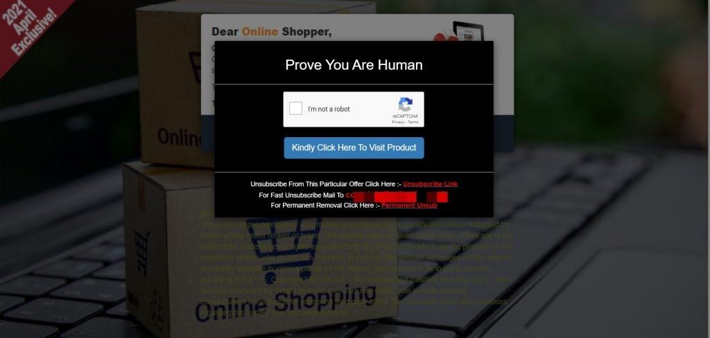 Fake website